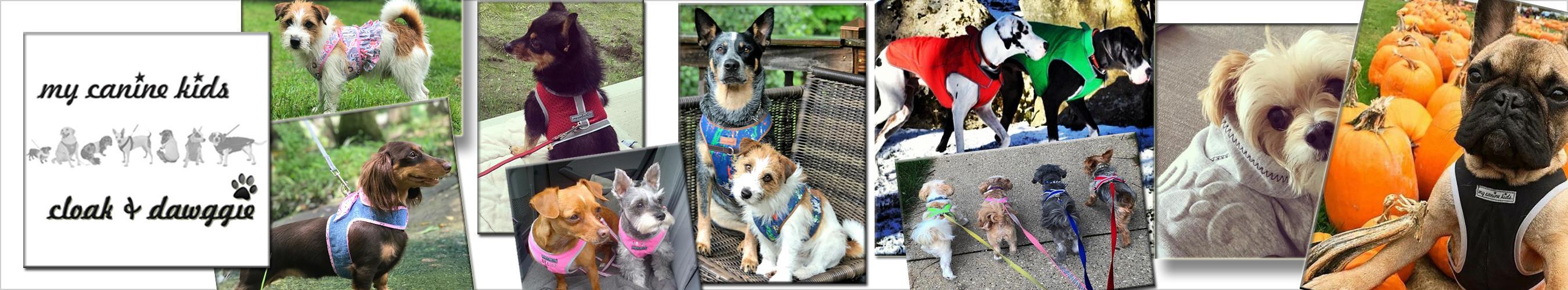 My Canine Kids - Cloak + Dawggie