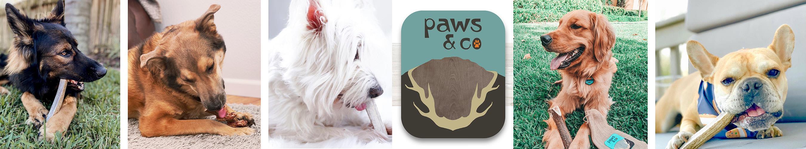 Paws & Co