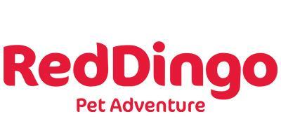 Red Dingo, Inc.